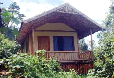Engagi Lodge Bwindi