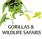 2 Days Gorilla Trek/ Tracking Tour in Rwanda