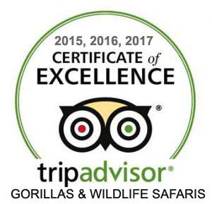 WhatsApp Gorillas and Wildlife Safaris