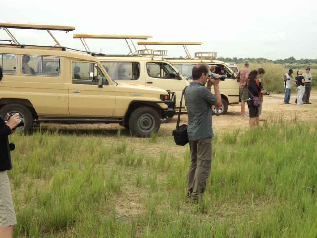 Uganda Tours - Executive vehicles used for Safari in Uganda