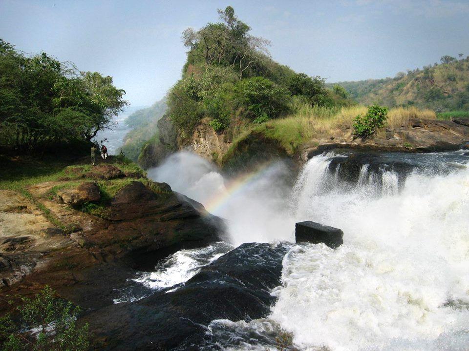 Murchison Falls - on the Best of Uganda Wildlife Primates Safari
