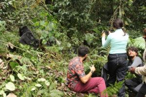 Tips for Gorilla Trekking - how to have the best gorilla trek in Rwanda
