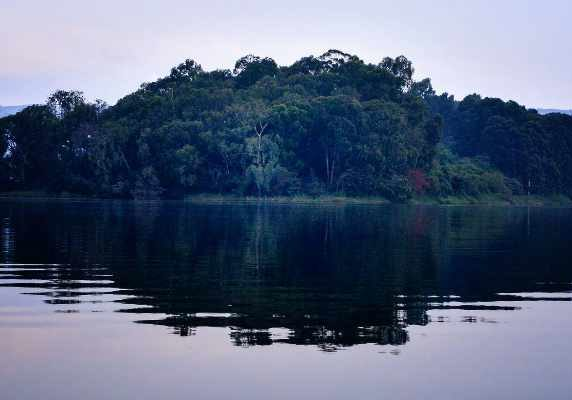 Uganda Lake Bunyonyi gorilla trek Bwindi Canoeing tour Gorillas and wildlife safaris