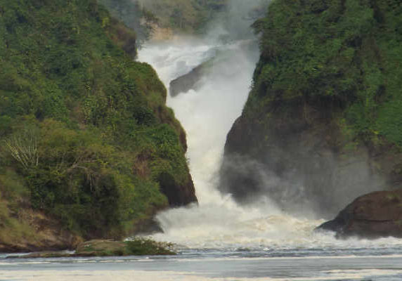 Murchison Falls Uganda safari with gorillas trekking wildlife safari Queen Elizabeth NP chimps trekking 9 days Uganda all inclusive private safari tour